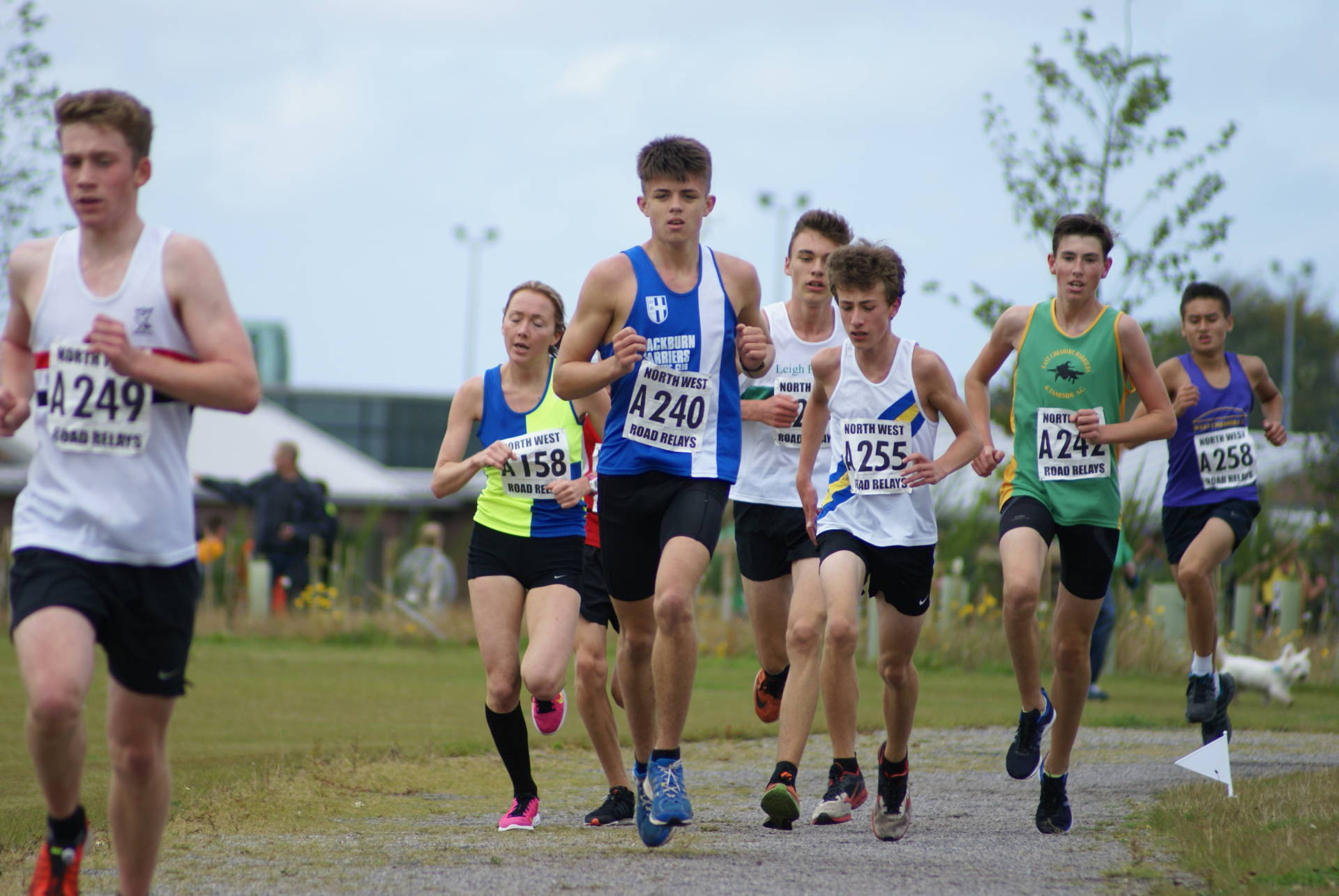 Gold, Silver, Bronze Medals and Fastest Legs for the Harriers at North West Relays